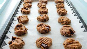 gluten-free choc chip cookie