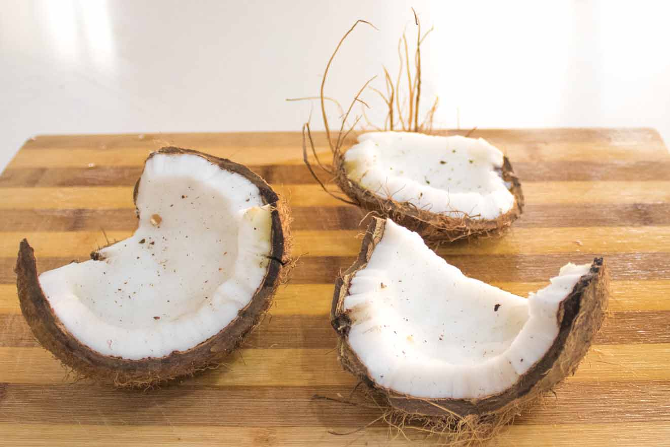 Homemade Coconut Milk with coconut and water